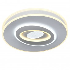 Потолочный светильник с пультом STORM/PL500